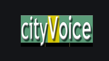 City Voice Newspaper – Democracy Day: CAPPA tasks government on Transparency, Participatory Governance