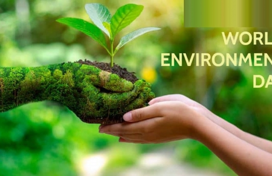 World Environment Day 2020: COVID-19 fallouts reinforce need to save our environment, CAPPA tells FG
