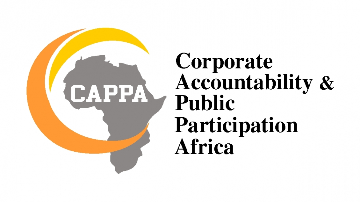 Press Release: New Report by CAPPA Exposes Grim Water Situation in Lagos
